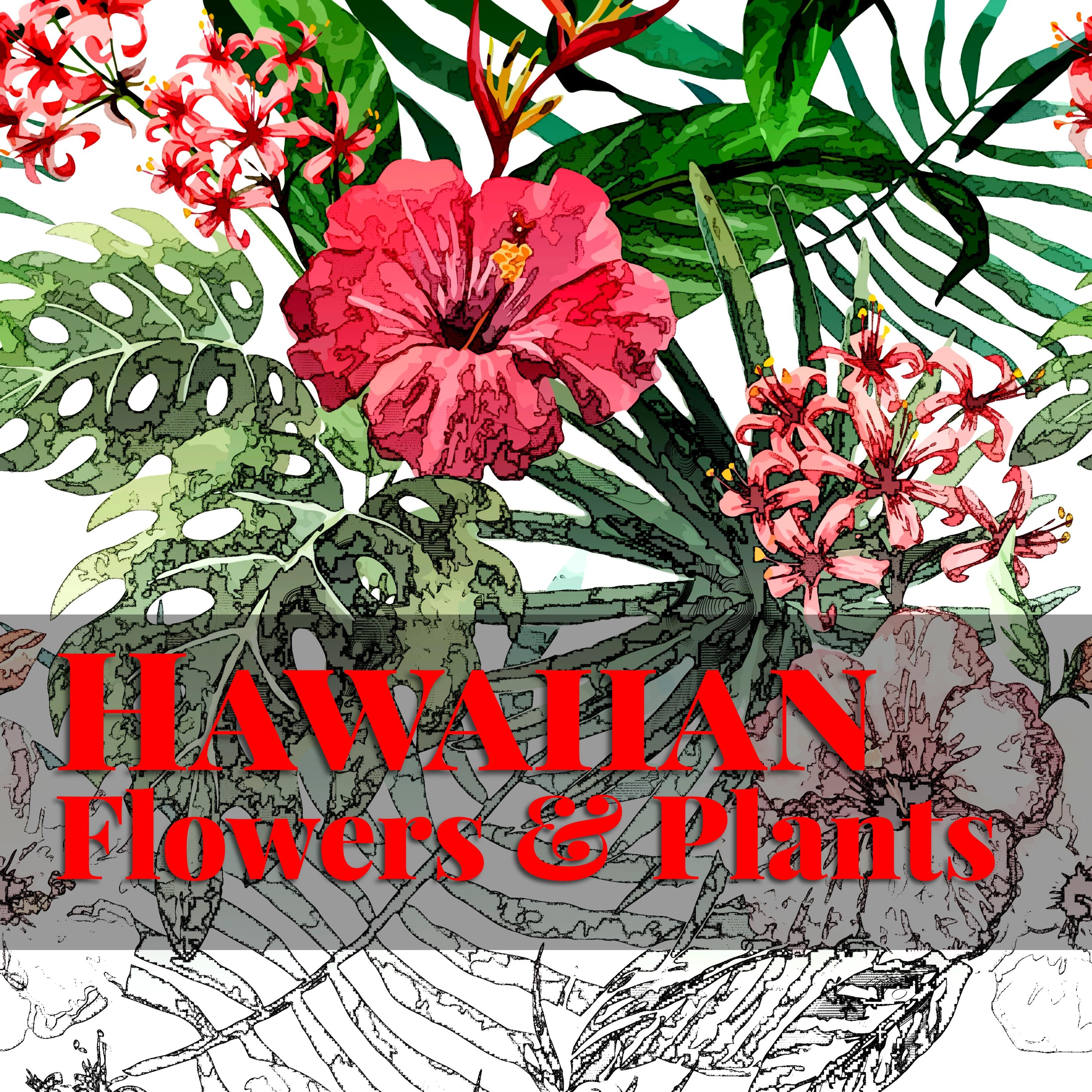 Hawaiian word coloring pages