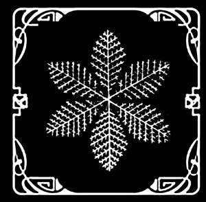 Snowflakes Interior_Page_05_Image_0001